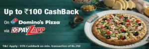 PayZapp Domino's Pizza Offer