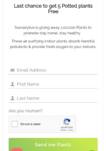 Get 5 Flower Plants For FREE