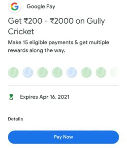 Google Pay Gully Cricket Offer